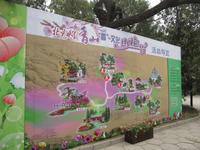 Mountain Flower Festival
